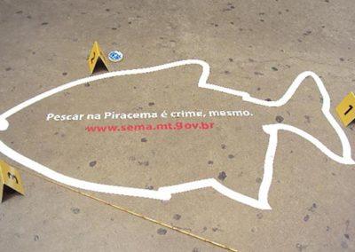 Governo MT – Piracema
