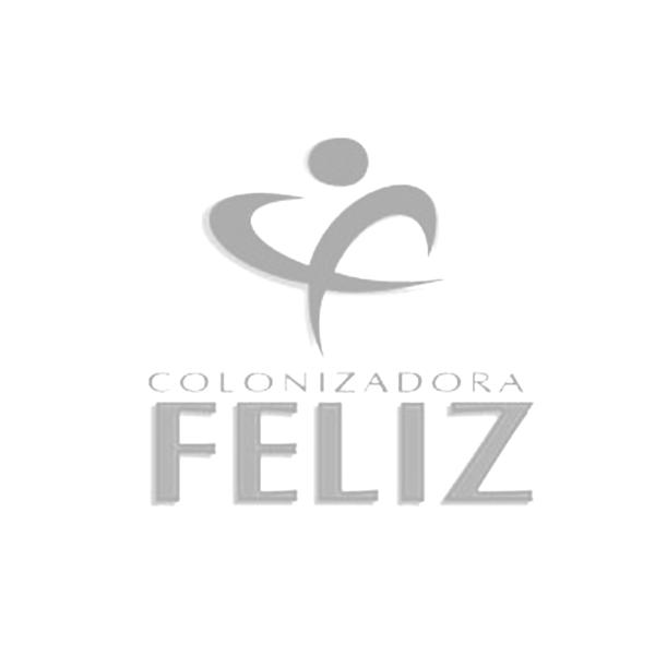 Colonizadora Feliz